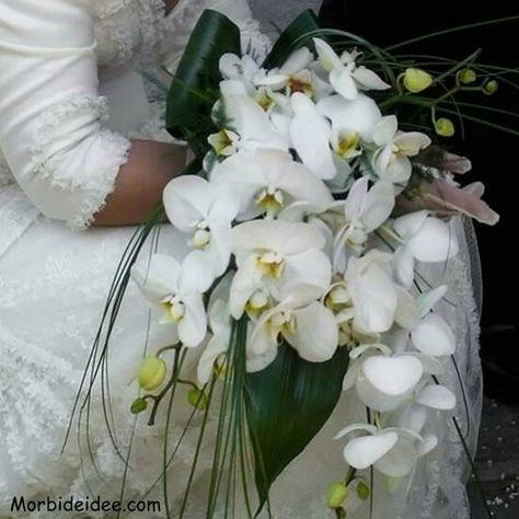 Bouquet Sposa Orchidea Bianca.Bouquet A Cascata Con Orchidee Bianche Bouquet Orchidea Fiori