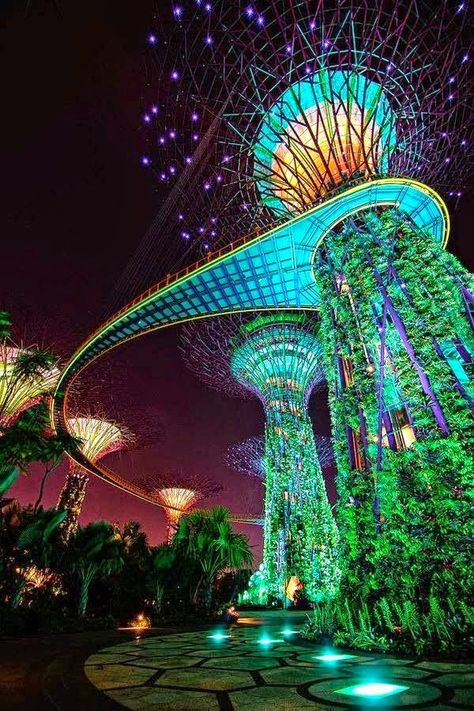 Gardens by the Bay, Marina Bay, Singapore -WOW! Singapore has some super cool architecture! Places Around The World, Travel Around The World, The Places Youll Go, Places To See, Around The Worlds, Singapore Garden, Singapore Travel, Sands Singapore, Singapore Tour