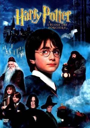 Harry Potter French A L Ecole Des Sorciers Harry Potter Film Harry Potter Movies Philosophers Stone