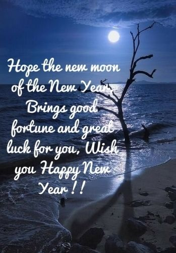 Happy New Year 2bwishes For Friends New Year Message Happy New Year Message Happy New Year Quotes
