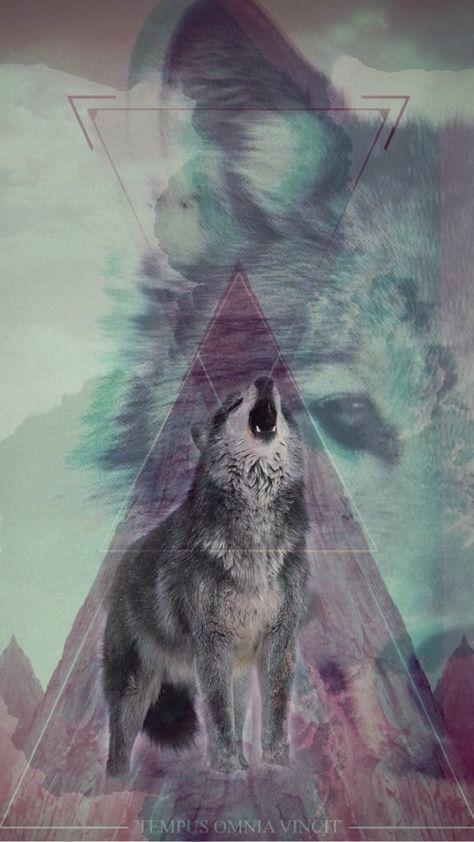 Made A Wolf Wallpaper For My Iphone 6 Tablolar Resim Hayvan Duvar Kagidi