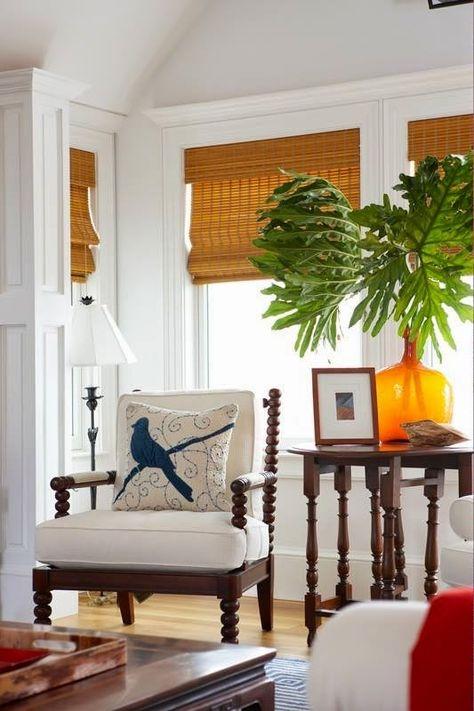 tropical living room idea