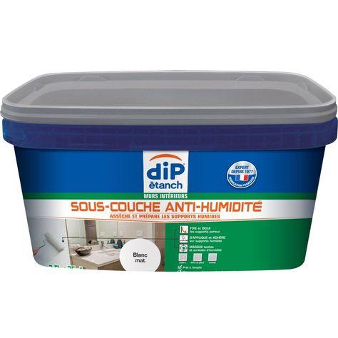 Sous Couche Antihumidite Dip Blanc 2 5 L Peinture Anti Moisissure Peinture Anti Humidite Gris Galet