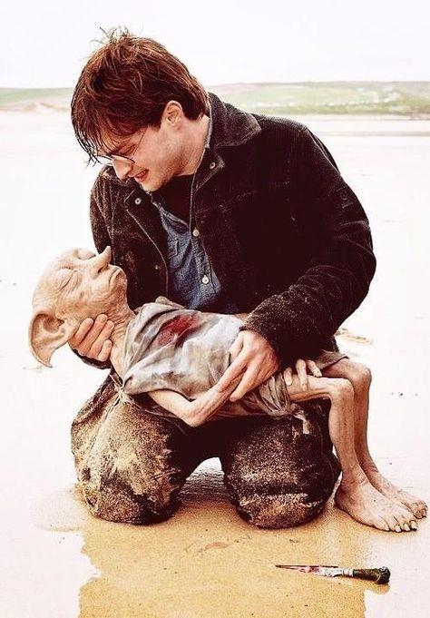 """""""Que playa tan hermosa para estar con amigos. Dobby esta feliz de estar con su amigo Harry Potter"""" #SomosHarryPotter"""