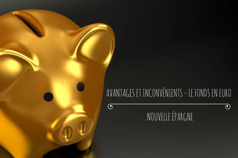 Avantages Et Inconvenients Assurance Vie Fonds Euro Nouvelle Epargne Assurance Vie Epargne Nouveau Ne
