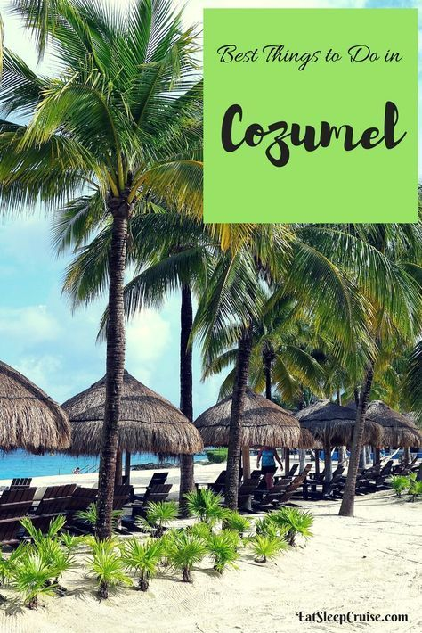 Our Picks For The Best Things To Do In Cozumel On A Cruise With