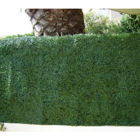 Haie de buis clipsable PVC CARTON 3 M2 vert : en vente chez ...