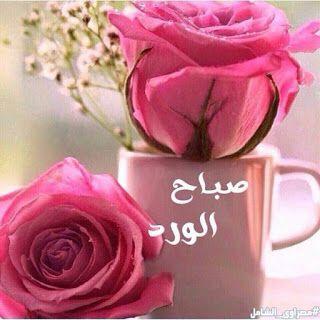 بوستات صباح الخير اجمل رسائل صباح الخير Good Morning Flowers Beautiful Morning Messages Good Morning Cards