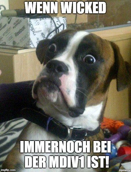 Lustige Bildunterschriften Bild Von Unshaved In Team Rasur Memes Auf Unshaved Memes 2018 Lustige Hund Meme Urkomische Zitate