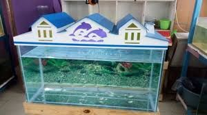 Fish Tank Roof Design Google Search Roof Design Fish Tank Design