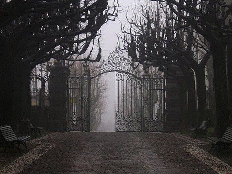 black and white, gate, and dark image Gothic Aesthetic, Slytherin Aesthetic, Hades Aesthetic, Arte Obscura, Black Butler, Dracula, Storyboard, Belle Photo, Cemetery