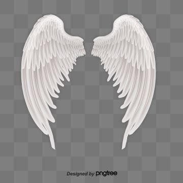 Alas De Angel Vector Amor Ala Volar Png Y Psd Para Descargar Gratis Pngtree Angel Wings Png Wings Png Cartoon Angel Wings