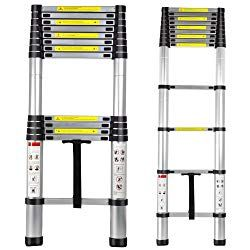Top 10 Best Selling Telescoping Ladders Reviews 2020 Ladder Telescopic Ladder Fan Light