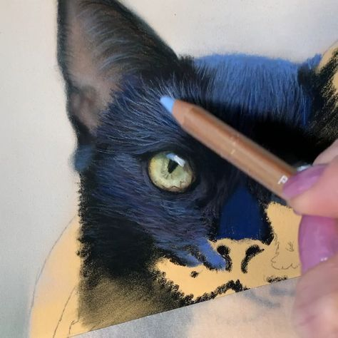 For pastel art ideas, visit my website and learn to paint pastel animals hairs!