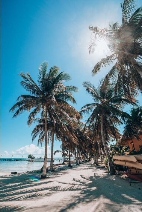 Unique Things to Do In Belize. Belize is a country with a constitutional monarchy located in northern Central America, and is characterized by its Belize City, Belize Hotels, Belize Vacations, Belize Travel, Belize Islands, Caye Caulker Belize, Ambergris Caye, San Pedro Belize, Islands
