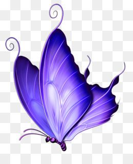 Free Download Butterfly Pink Clip Art Transparent Purple Deco Butterfly Png Clipart Png 512 600 And Butterfly Illustration Butterfly Art Butterfly Drawing