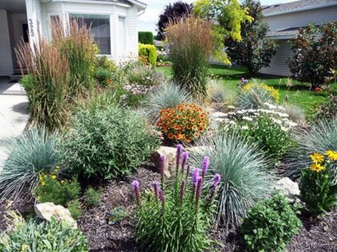 Beautiful Xeriscape Landscaping Colorado & 60 Great Ideas for Your Garden