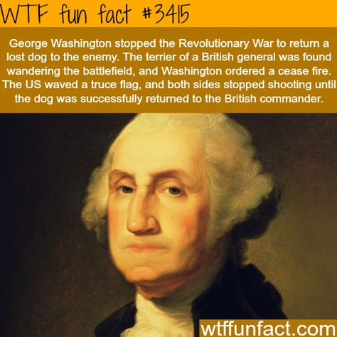 Top quotes by George Washington-https://s-media-cache-ak0.pinimg.com/474x/a3/89/22/a389220f2e94145630fc9d9d80607ca8.jpg