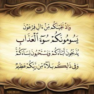 Quran Hd 046015 ووصينا الإنسان بوالديه إحسانا Quran Hd Quran Digital Art Girl Iyo