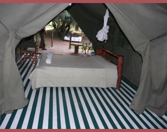 460 best African Home Adventure Safaris Mount Kenya Affordable Adventures images on Pinterest   Mount kenya Cheap deals and African & 460 best African Home Adventure Safaris Mount Kenya Affordable ...
