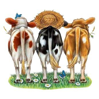 Tubes y dibujos divertidos de vacas | Blog de imágenes
