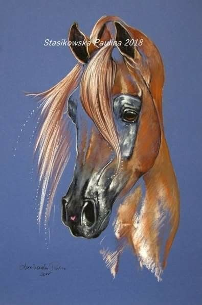 Pin By عبدالإله العماري On Horses In Art Horse Art Drawing Horse Artwork Horse Art