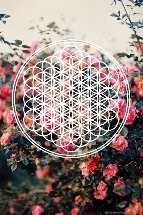 Flower of life / found myself a good background