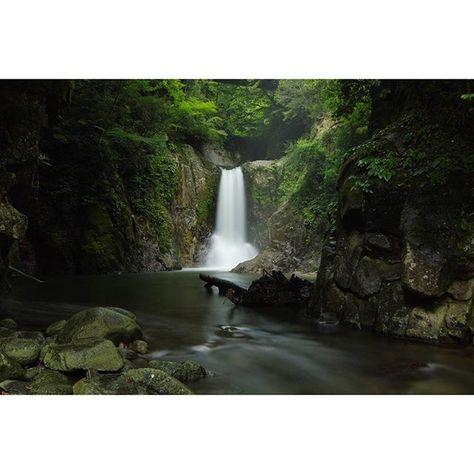 【in3set】さんのInstagramをピンしています。 《滝  撮影地:愛知県  #PENTAX#心に染み入る#ファインダー越しの私の世界#キタムラ写真投稿#bestjapanpics#Lovers_Nippon#写真好きな人と繋がりたい#滝#waterfall#川#水#水辺#滝音#滝壺#森#愛知#aichi#一眼#一眼レフ#光と影#光#影#風光明媚#instagood#スローシャッター#長時間露光#雅#風景#マイナスイオン》