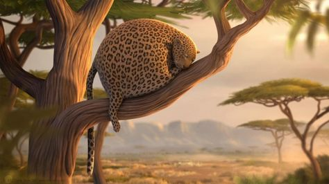 What if wild animals ate fast food? [Video]
