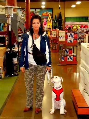 Teach Your Deaf Dog The Watch Me Cue Deaf Dog Dog Leash