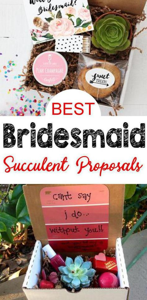 Succulent Bridesmaid Proposal! Find the best bridesmaid proposal ideas! From DIY ideas to box ideas to card ideas to kits to affordable to cheap to inexpensive you can find creative, unique, simple, easy and fun bridesmaid proposals. Great gifts for your feature bridal party - can be used as maid of honor proposals, junior bridesmaids and flower girl proposals too. Give at your engagement party or get together with your bride tribe. Get the best succulent plant Bridesmaid Proposal ideas now!