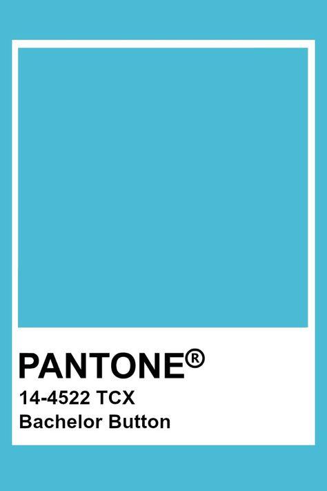 Pantone Bachelor Button