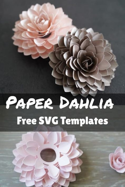 This paper Dahlia might be the favorite paper flower I've made so far. It looks so complicated but it's actually not. I've structured the template to minimize having to finagle too much when…  More Rolled Paper Flowers, Large Paper Flowers, Tissue Paper Flowers, Paper Flower Wall, Paper Roses, How To Make Paper Flowers, 3d Cuts, Paper Flower Tutorial, Large Paper Flower Template