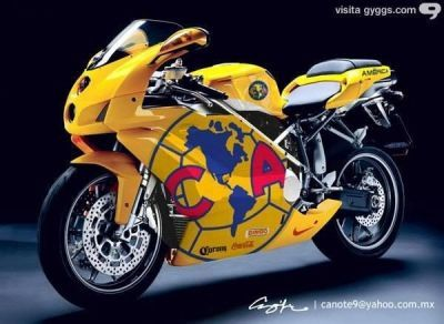 25 best americanista images on Pinterest  Club america Soccer