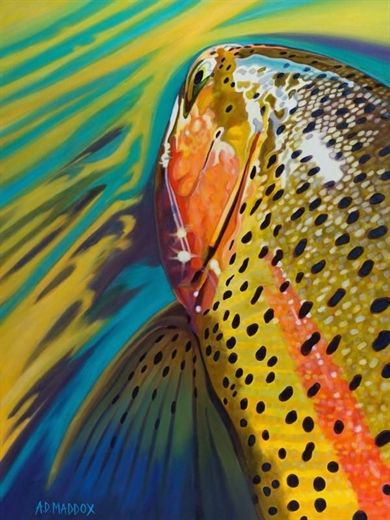 Fishing For Food What Are The Best Fish To Eat Fly Fishing Art Fly Fishing Fish