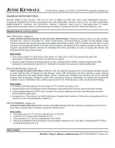 Insurance Resume Examples Executive Resume Executive Resume Template