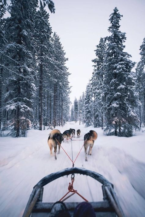 Finland Photography Guide from Elaine Li