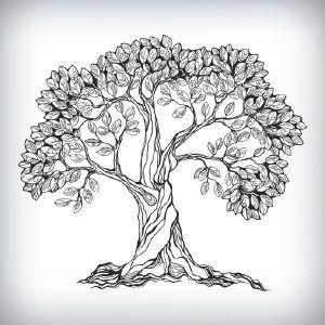 Contoh Soal Dan Jawaban Psikotes Pramugari Beserta Pembahasannya Tree Drawing Oak Tree Drawings Tree Graphic