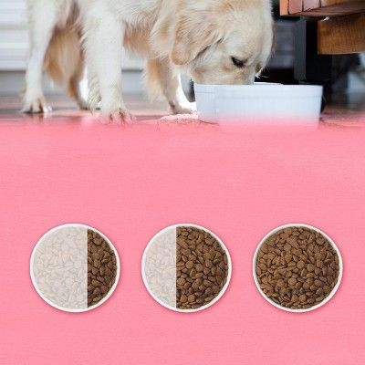Purina Beyond Superfood Blend Salmon Egg And Pumpkin Recipe