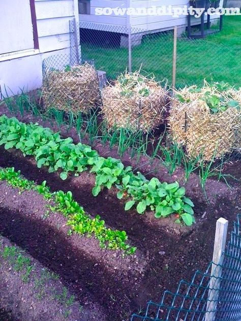 straw potato bins made from simple recycled materials