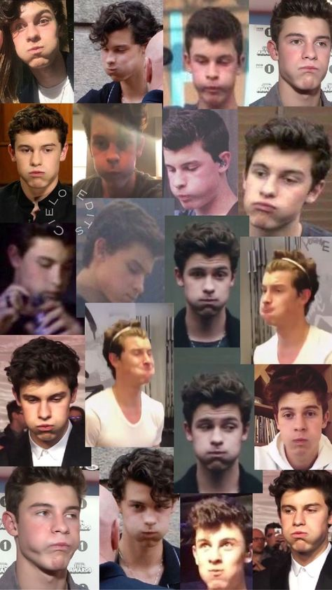 Shawn Mendes the chipmunk 😂😂 Shawn Mendes Memes, Shawn Mendes Imagines, Shane Mendes, Mendes 98, Shawn Mendes Lindo, Mendes Army, Shawn Mendes Wallpaper, Magcon Boys, Cameron Dallas
