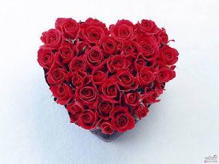 صور ورد وقلوب بوستات حب و رومانسية للفيس بوك Rose Flower Wallpaper Red Roses Wallpaper Very Beautiful Flowers