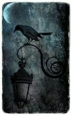 Raven, Crow, et Corbacs  A442e213a93ca858164b646790ca1b6d--see-through-edgar-allan-poe