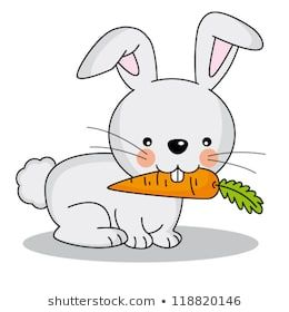 Rabbit Eating Carrot Images Stock Photos Vectors Shutterstock Rabbit Eating Eating Carrots Rabbit
