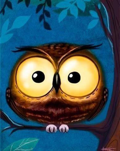 Owl Kits Cartoon  Animal Wall Decoration