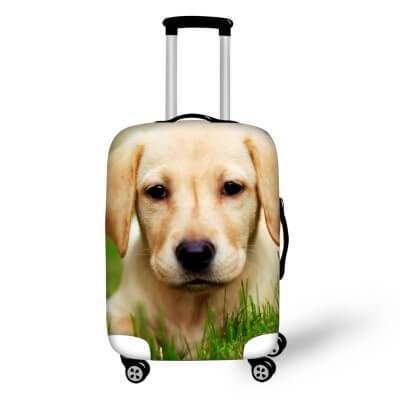 chaqlin Golden Retriever Design Lovely Suitcase Cover Luggage Protector Size S 18-20 inches