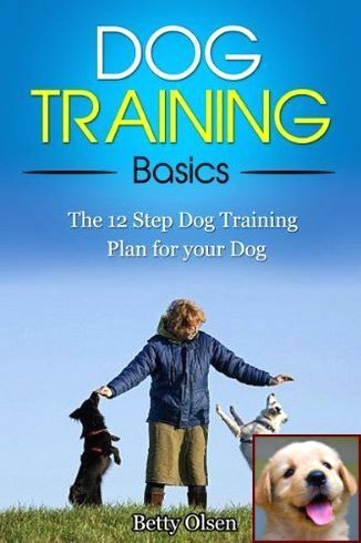 House Training A Puppy With An Older Dog And Clicker Training Dogs