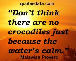 Eyes Wide Open At All Times African Quotes African Proverb Proverbs Quotes