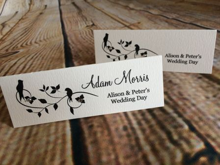 10 best guest place name cards images on pinterest diy wedding 10 best guest place name cards images on pinterest diy wedding invitations handmade wedding invitations and homemade wedding invitations stopboris Choice Image