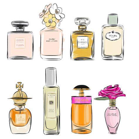 Annaelisabeths Tumblr Com Frascos De Perfume Desenhos De